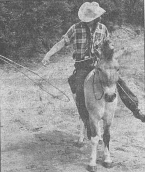 Beim Training